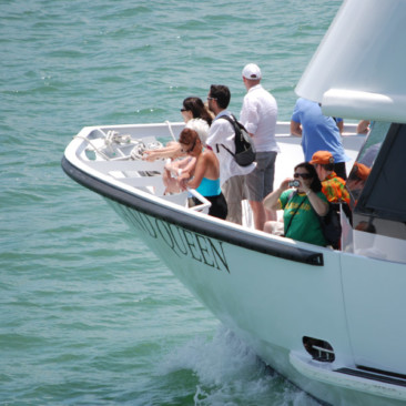 Enjoy the Millionaire's Row Cruise in Miami